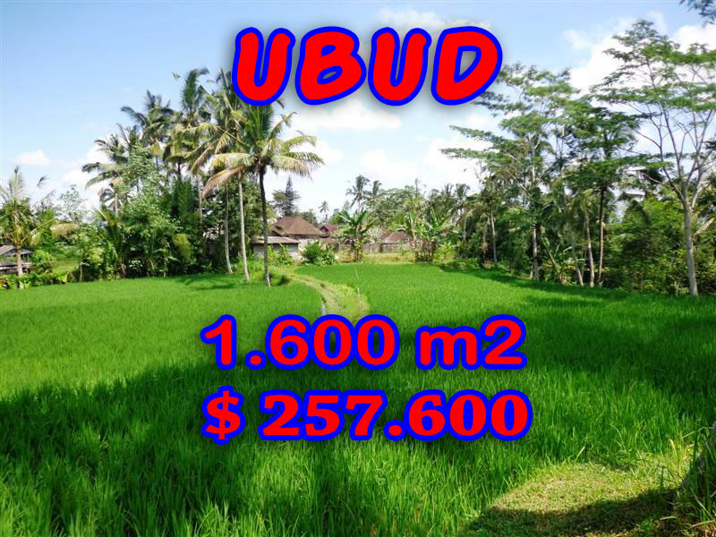 10-Land-for-sale-in-Ubud-Bali