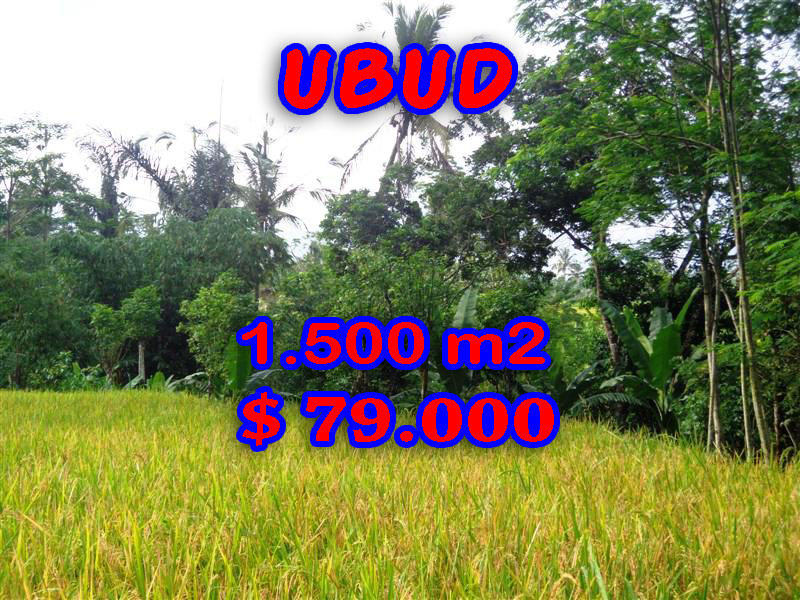 Land in Sale for sale