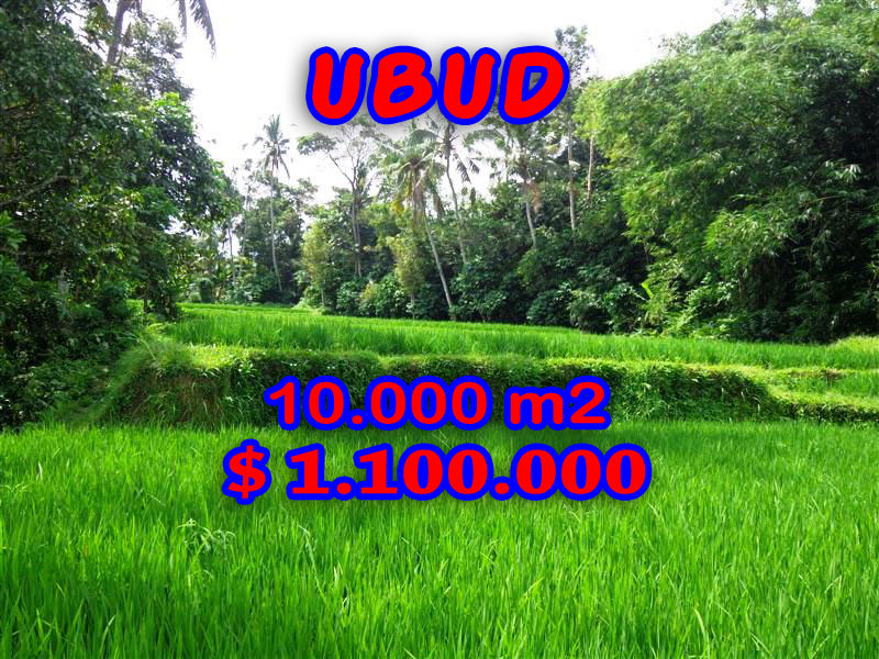 Property for sale in Ubud Bali Land
