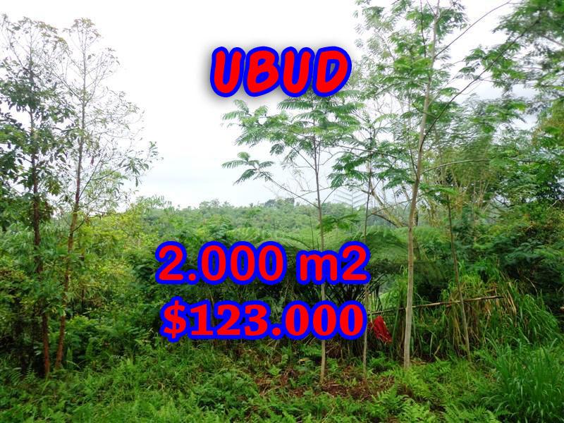 -Land-sale-in-Ubud-Bali