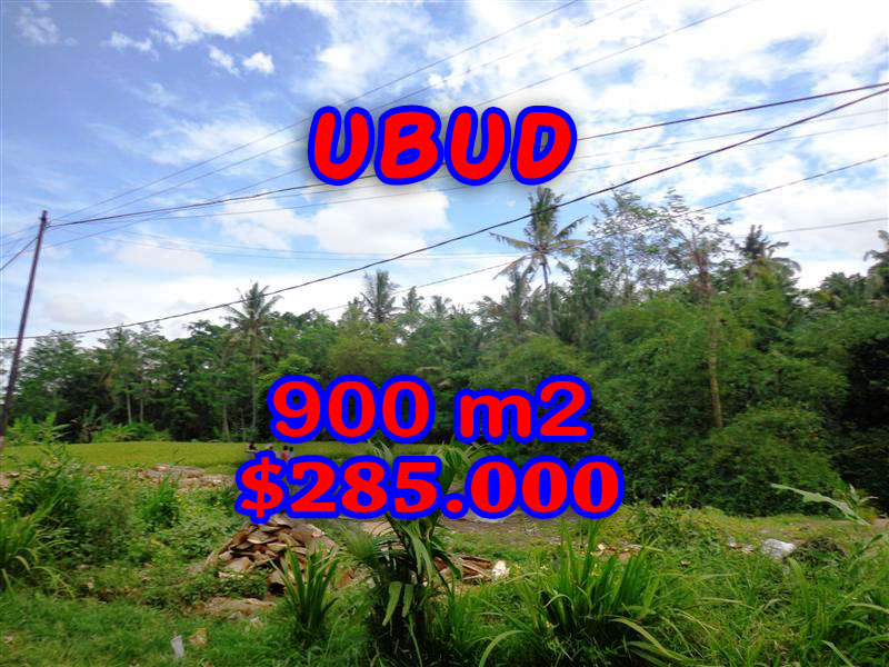 Property-for-sale-in-Canggu-land