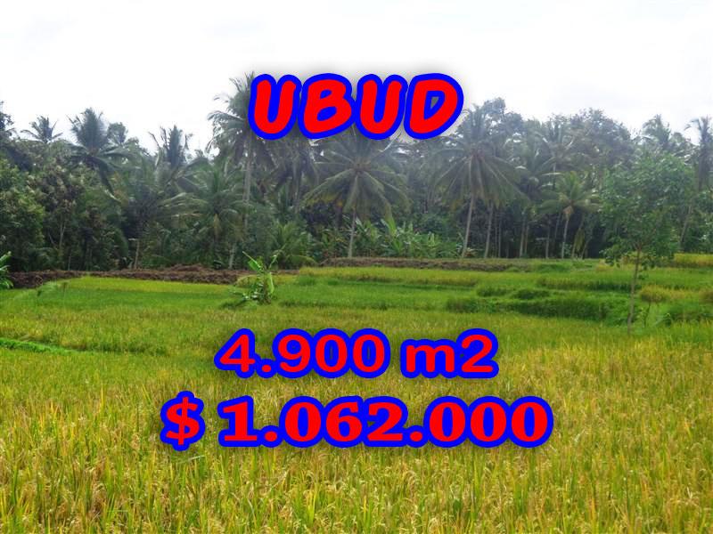 Land-sale-in-Ubud-Bali