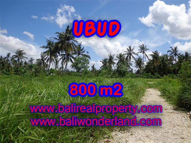 Land for sale in Ubud Bali, Unbelievable view in Central Ubud – TJUB352