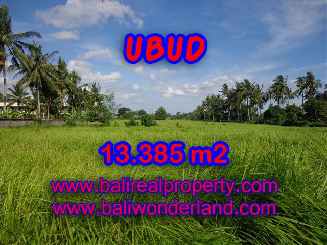Land for sale in Ubud Bali, Magnificent view in Central Ubud – TJUB357