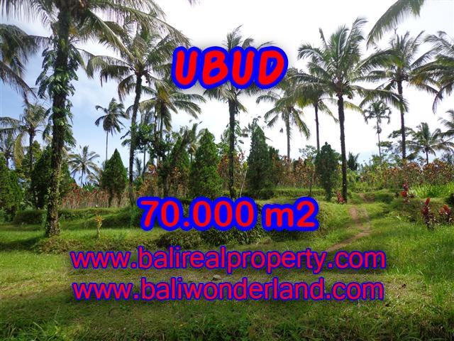 Land for sale in Ubud, Fantastic view in Ubud Payangan Bali – TJUB358