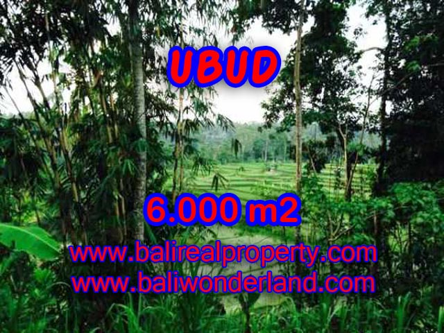 Land in Ubud Bali for sale, Outstanding view in Ubud Center – TJUB349