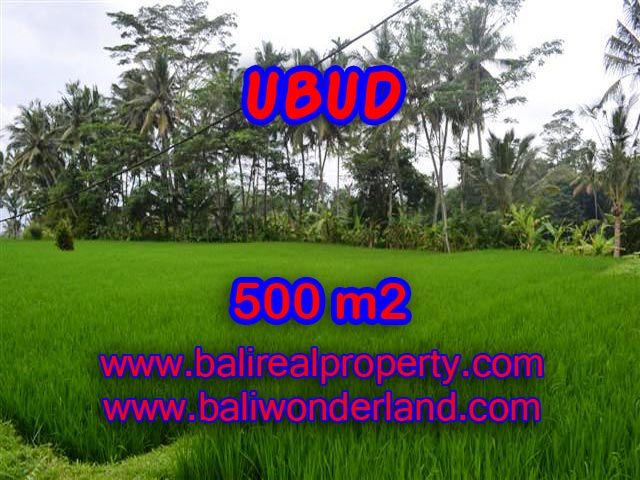 Attractive Property for sale in Bali, land for sale in Ubud  – TJUB364