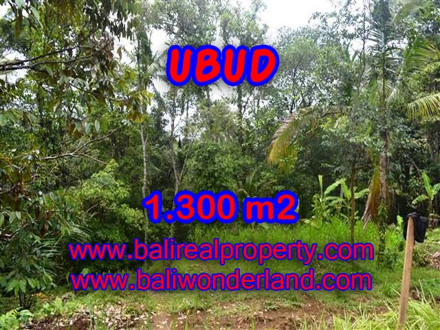 Land for sale in Ubud Bali, Great view in Ubud Pejeng – TJUB362
