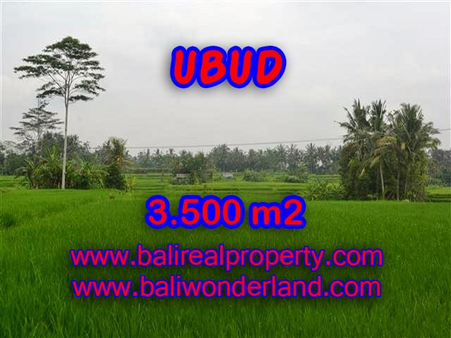 Exotic LAND FOR SALE IN UBUD Bali, rice fields and mountain view in Ubud Pejeng– TJUB361