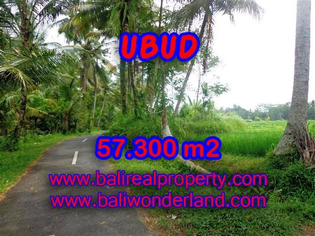 Land for sale in Ubud, Fantastic view in Ubud Tampak siring Bali – TJUB377