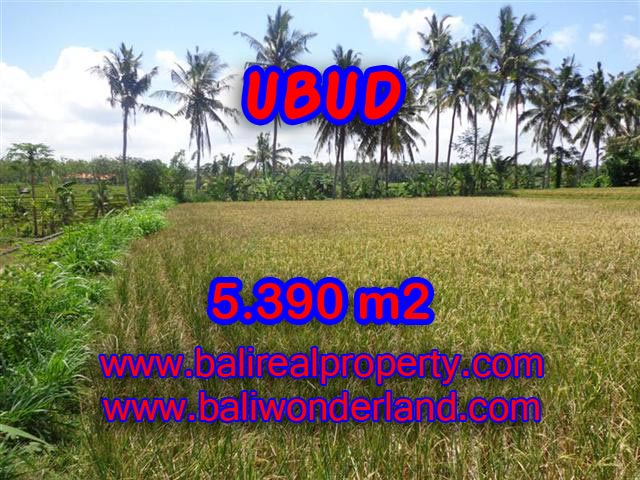 Land for sale in Ubud Bali, Great view in Ubud Mas – TJUB342