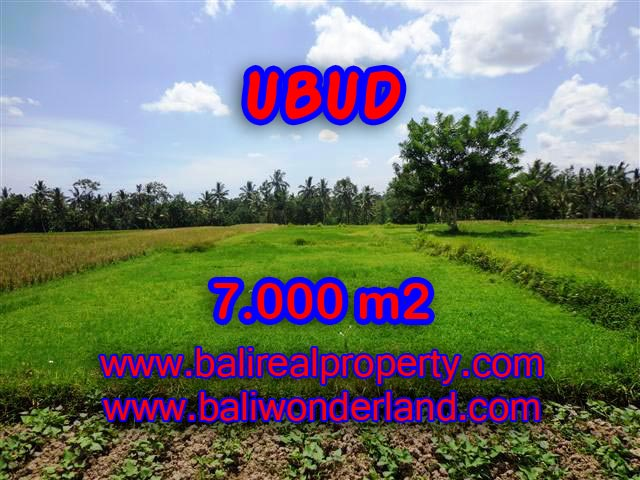 Land for sale in Ubud Bali, Great view in Ubud Center – TJUB381