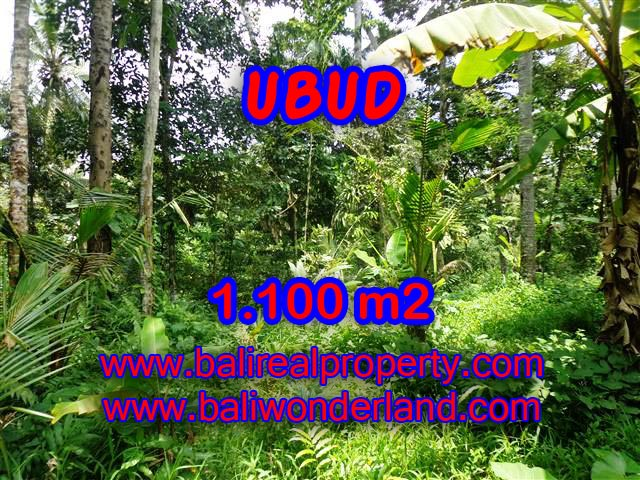 Land in Ubud Bali for sale, nice view in Ubud Tampak siring Bali – TJUB378