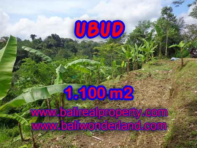 Land for sale in Bali, wonderful view in Ubud Bali – TJUB407