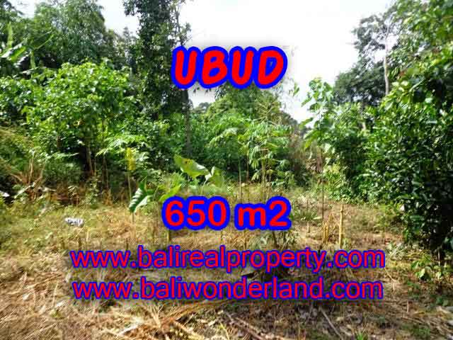 Stunning Property for sale in Bali land sale in Ubud Bali – TJUB417