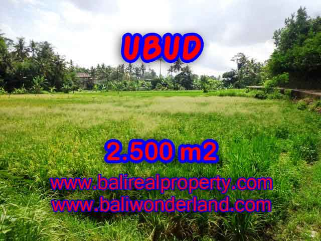 Property in Bali for sale, Astonishing land for sale in Ubud Bali – TJUB418