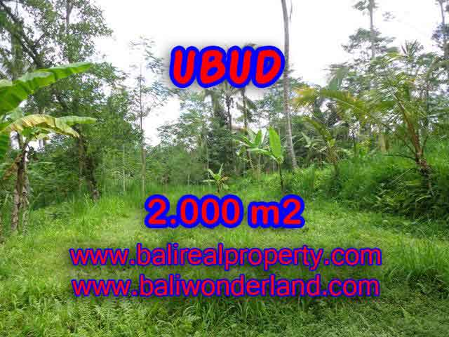 Land for sale in Bali, magnificent view Ubud Bali – TJUB406