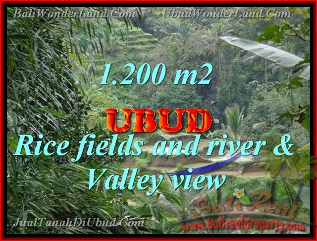 Property sale in Bali, Beautiful land in Ubud for sale – TJUB420