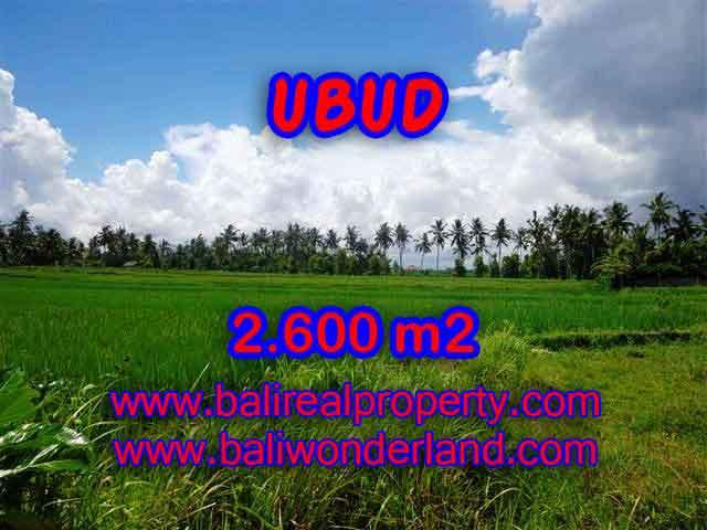 Land in Ubud for sale, Attractive view in Ubud Center Bali – TJUB374
