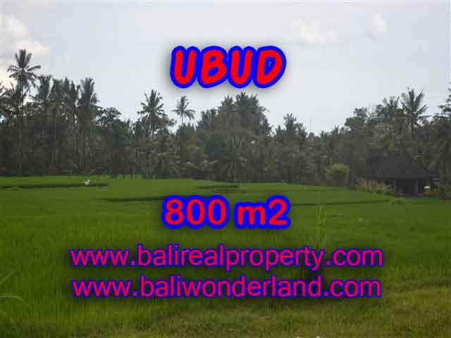 Land for sale in Bali, exceptional view in Ubud Pejeng – TJUB396