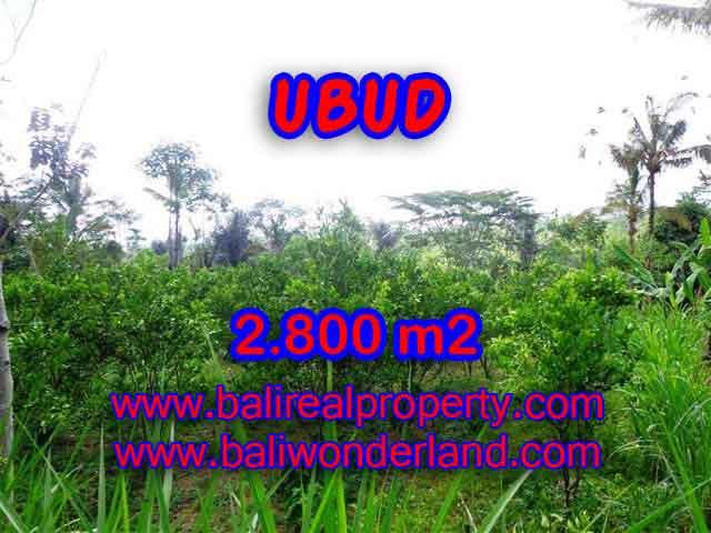 Fantastic Land for sale in Ubud Bali, Green lush and mountain view in Ubud Tegalalang– TJUB375