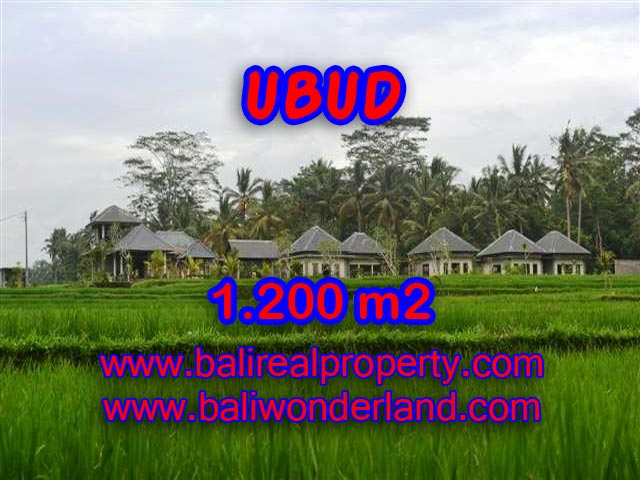 Exotic Property for sale in Bali, LAND FOR SALE IN UBUD Bali – TJUB365