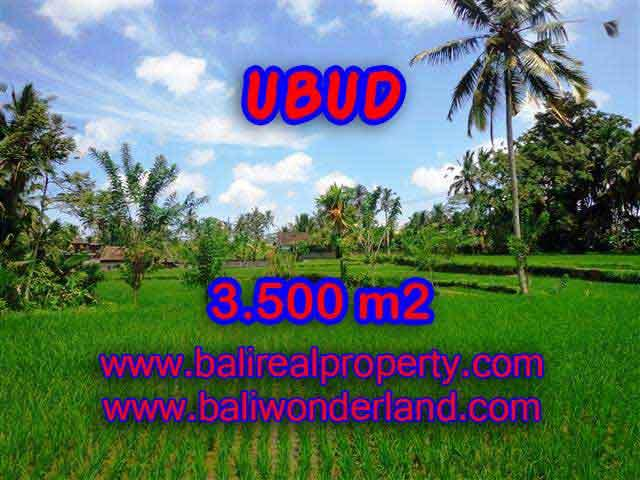 Land in Ubud Bali for sale, Outstanding view in Ubud Tegalalang – TJUB388