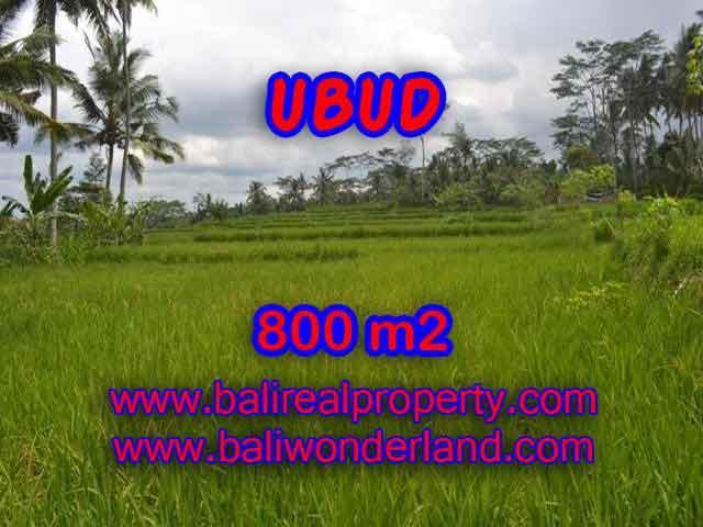 Land in Bali for sale, astounding view in Ubud Bali – TJUB393