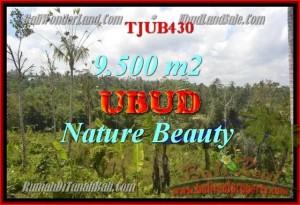 Affordable 9,500 m2 LAND FOR SALE IN UBUD TJUB430