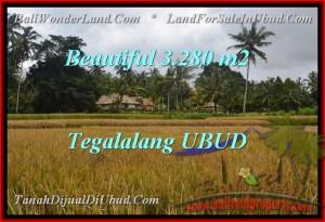 Exotic LAND SALE IN Ubud Tegalalang TJUB463