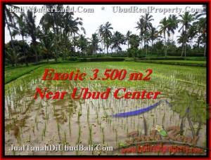 Magnificent UBUD 3,500 m2 LAND FOR SALE TJUB477