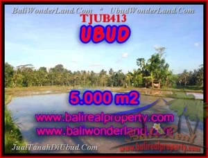 Exotic PROPERTY 5,000 m2 LAND IN UBUD BALI FOR SALE TJUB413