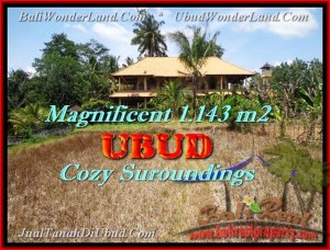 FOR SALE Magnificent PROPERTY 1.143 m2 LAND IN Sentral Ubud BALI TJUB460
