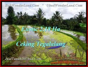Magnificent 21,800 m2 LAND FOR SALE IN UBUD BALI TJUB471