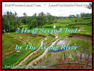 Magnificent PROPERTY LAND FOR SALE IN UBUD TJUB473