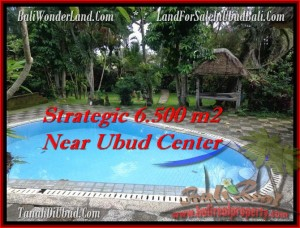 Exotic PROPERTY 6,500 m2 LAND FOR SALE IN UBUD BALI TJUB479