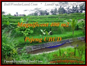 Magnificent PROPERTY 400 m2 LAND IN Ubud Pejeng FOR SALE TJUB483