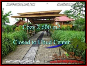 Beautiful PROPERTY LAND FOR SALE IN UBUD TJUB491