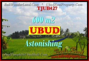 Affordable PROPERTY Ubud Tegalalang BALI LAND FOR SALE TJUB427