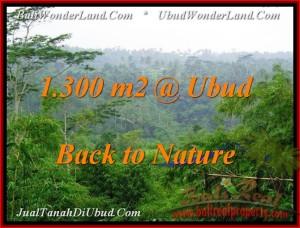Ubud Tegalalang LAND FOR SALE TJUB481