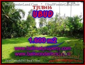 Affordable PROPERTY LAND SALE IN Sentral Ubud BALI TJUB416