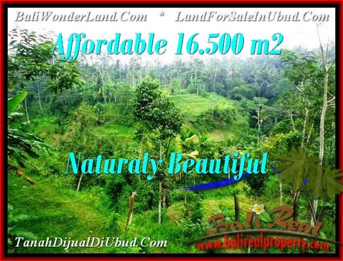 Affordable UBUD 16,500 m2 LAND FOR SALE TJUB494
