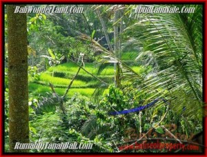 Exotic 725 m2 LAND SALE IN UBUD TJUB495