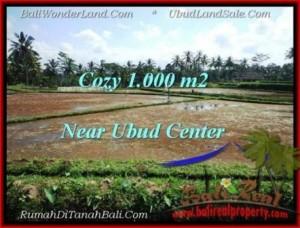 FOR SALE Beautiful PROPERTY 1,000 m2 LAND IN UBUD BALI TJUB501