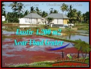 FOR SALE Beautiful PROPERTY 4,200 m2 LAND IN UBUD BALI TJUB502