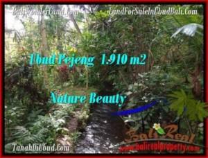 Affordable LAND FOR SALE IN Ubud Pejeng BALI TJUB504
