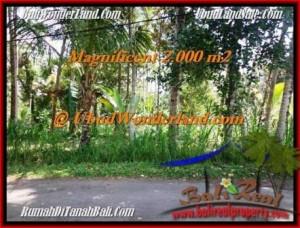 Magnificent Ubud Payangan BALI LAND FOR SALE TJUB506