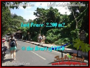 FOR SALE Affordable PROPERTY LAND IN Sentral Ubud BALI TJUB509