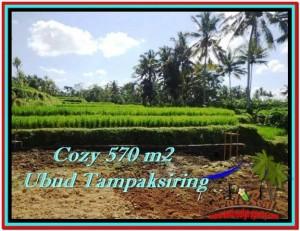 UBUD 570 m2 LAND FOR SALE TJUB511
