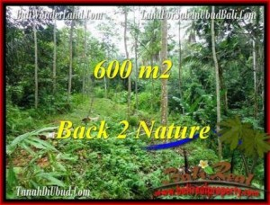 FOR SALE Magnificent PROPERTY LAND IN UBUD TJUB493